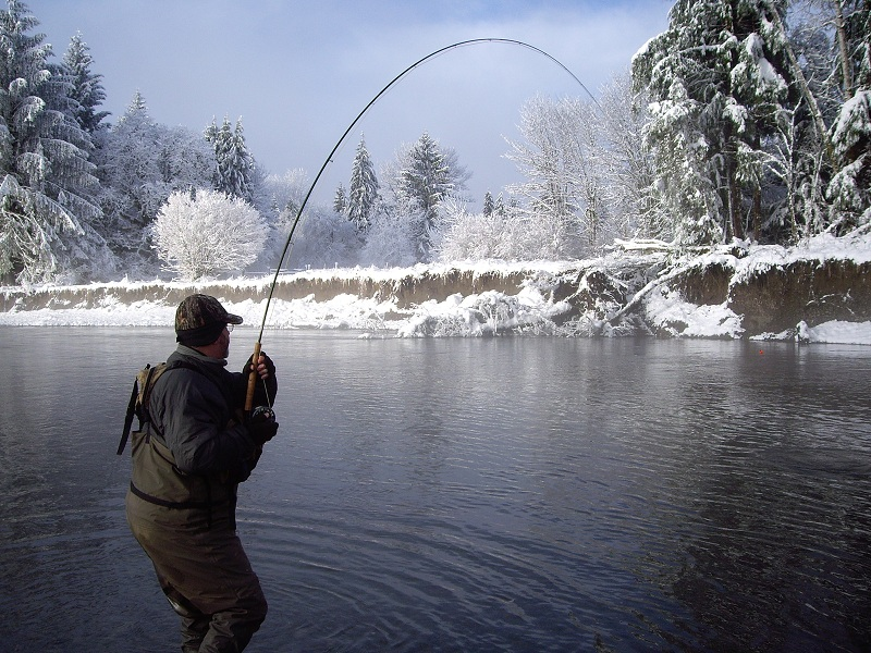 Winter Steelhead on a Snowy Day