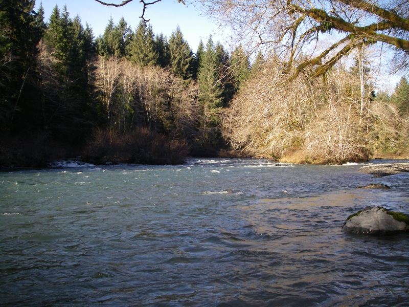 Sol duc in the sun olympic peninsula fly fishing blog for Sol duc river fishing