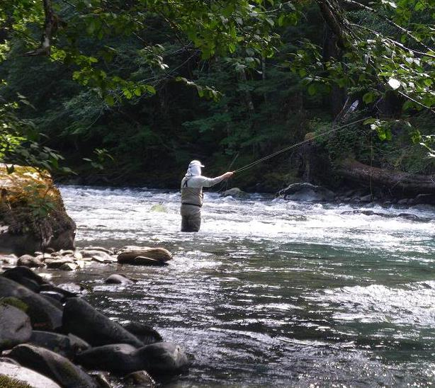 2013 question summer fly fishing in olympic national for Sol duc river fishing